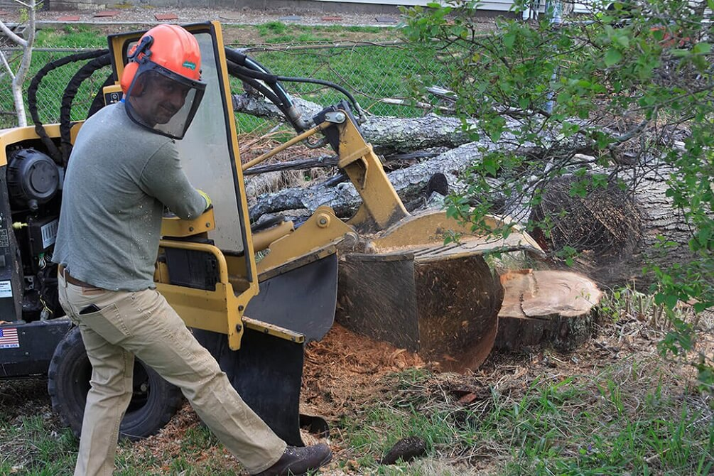 Contact Us-Des Moines Tree Trimming and Stump Grinding Services-We Offer Tree Trimming Services, Tree Removal, Tree Pruning, Tree Cutting, Residential and Commercial Tree Trimming Services, Storm Damage, Emergency Tree Removal, Land Clearing, Tree Companies, Tree Care Service, Stump Grinding, and we're the Best Tree Trimming Company Near You Guaranteed!