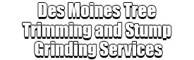 Des Moines Tree Trimming and Stump Grinding Services Logo-We Offer Tree Trimming Services, Tree Removal, Tree Pruning, Tree Cutting, Residential and Commercial Tree Trimming Services, Storm Damage, Emergency Tree Removal, Land Clearing, Tree Companies, Tree Care Service, Stump Grinding, and we're the Best Tree Trimming Company Near You Guaranteed!