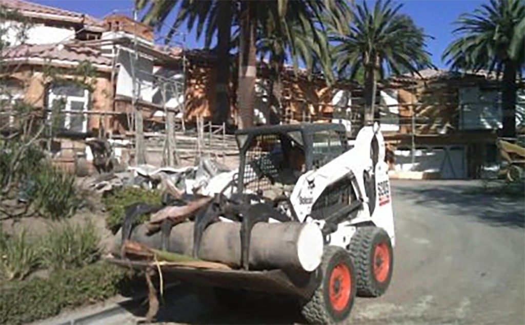 Palm-Tree-Removal-Des Moines Tree Trimming and Stump Grinding Services-We Offer Tree Trimming Services, Tree Removal, Tree Pruning, Tree Cutting, Residential and Commercial Tree Trimming Services, Storm Damage, Emergency Tree Removal, Land Clearing, Tree Companies, Tree Care Service, Stump Grinding, and we're the Best Tree Trimming Company Near You Guaranteed!