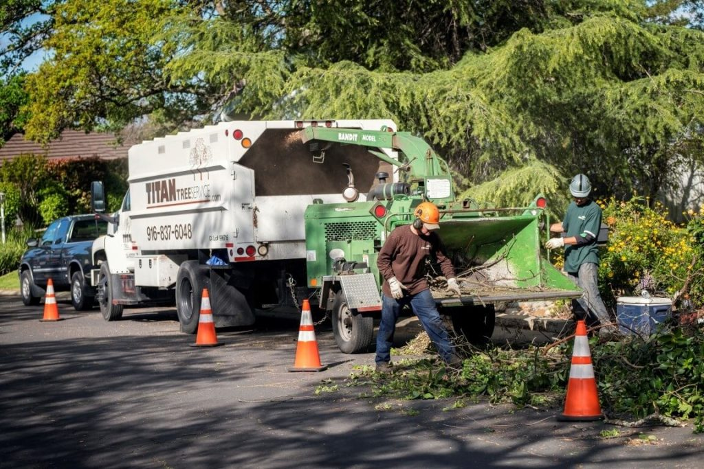 Residential-Tree-Services-Des Moines Tree Trimming and Stump Grinding Services-We Offer Tree Trimming Services, Tree Removal, Tree Pruning, Tree Cutting, Residential and Commercial Tree Trimming Services, Storm Damage, Emergency Tree Removal, Land Clearing, Tree Companies, Tree Care Service, Stump Grinding, and we're the Best Tree Trimming Company Near You Guaranteed!