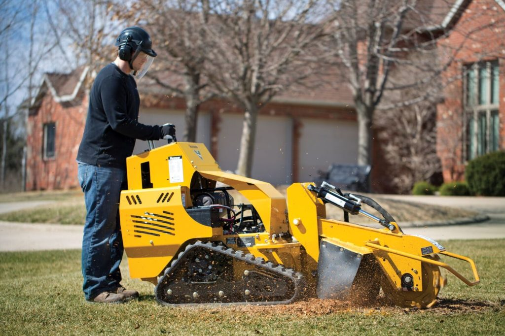 Carlisle-Des Moines Tree Trimming and Stump Grinding Services-We Offer Tree Trimming Services, Tree Removal, Tree Pruning, Tree Cutting, Residential and Commercial Tree Trimming Services, Storm Damage, Emergency Tree Removal, Land Clearing, Tree Companies, Tree Care Service, Stump Grinding, and we're the Best Tree Trimming Company Near You Guaranteed!